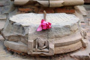 Lotusblume auf zerstörtem Relief