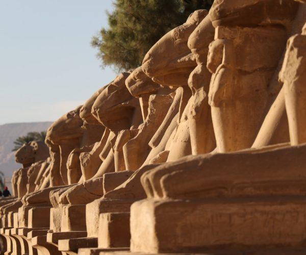 Egypt mix120