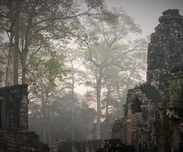Cambodia 2019_21