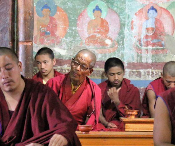 271 Mönche in Thiksey (Ladakh)