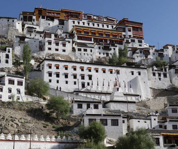 290 Blick auf die Klosterstadt Thiksey (Ladakh)