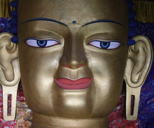 293 Sakyamuni Buddha im Palast von Shey (Ladakh)