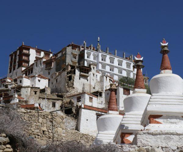 311 Stupas vor Chemre (Ladakh)